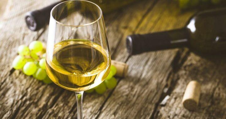 Chardonnay Grape